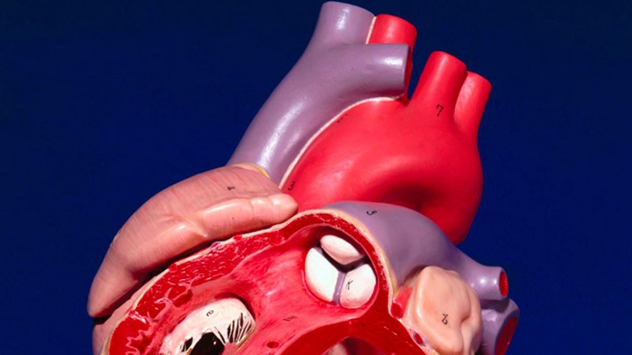 Назван неожиданный признак приближающегося инфаркта