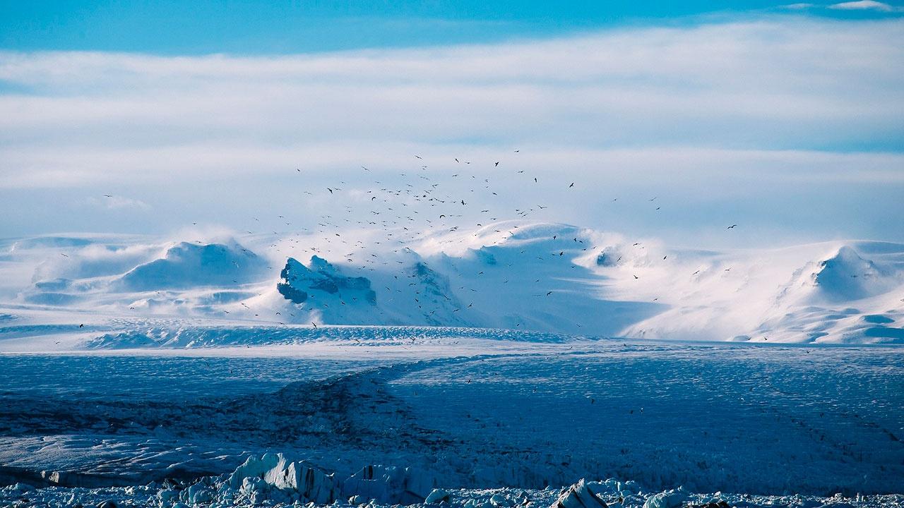 Ученые рассказали о предвестниках нового ледникового периода