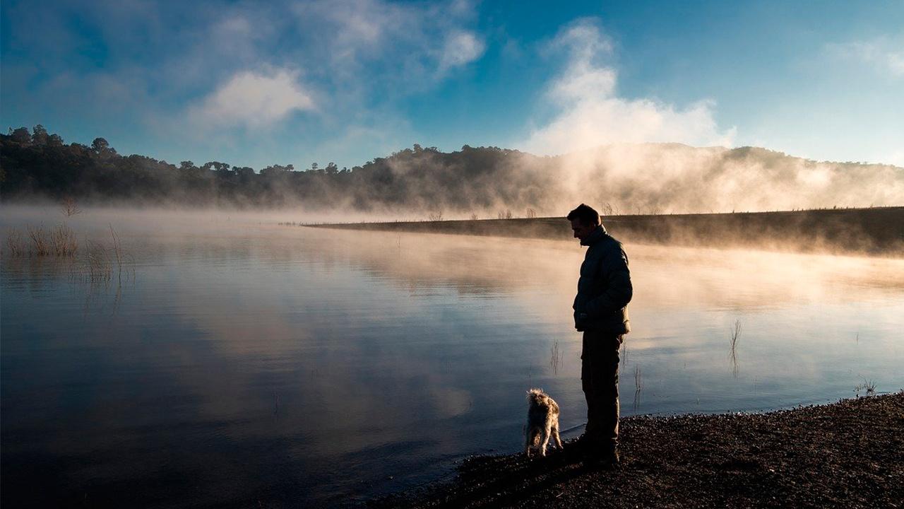 Кинологи предостерегли владельцев собак от выгула рядом с водоемами