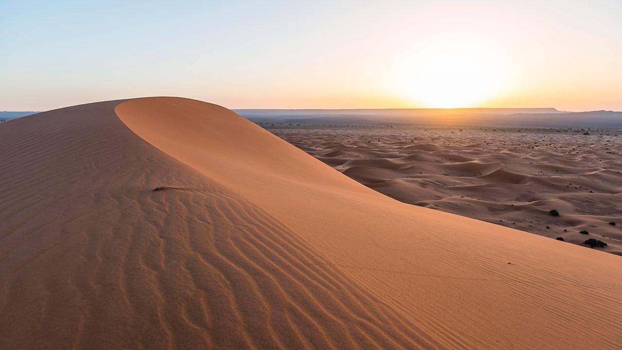 Ученые назвали причины превращения Сахары в крупнейшую в мире пустыню