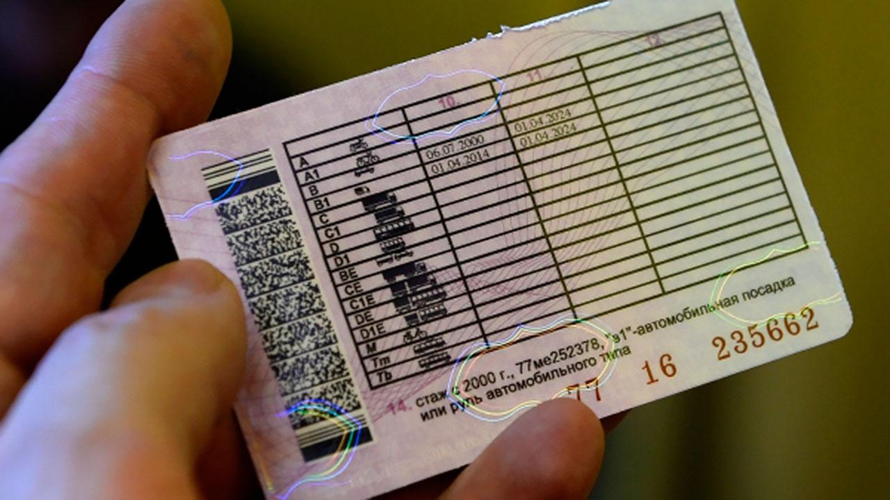 Водительские права в России предложили приравнять к паспорту