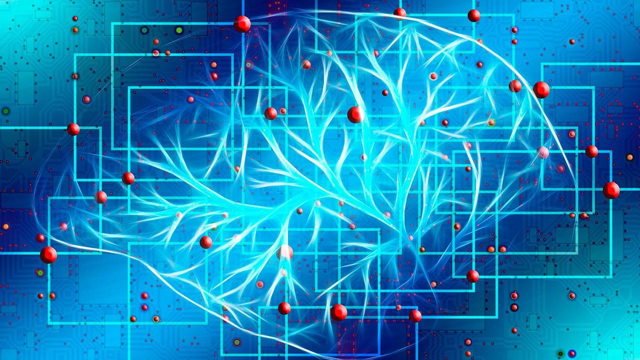 Смерть от COVID-19 сможет предсказать искусственный интеллект