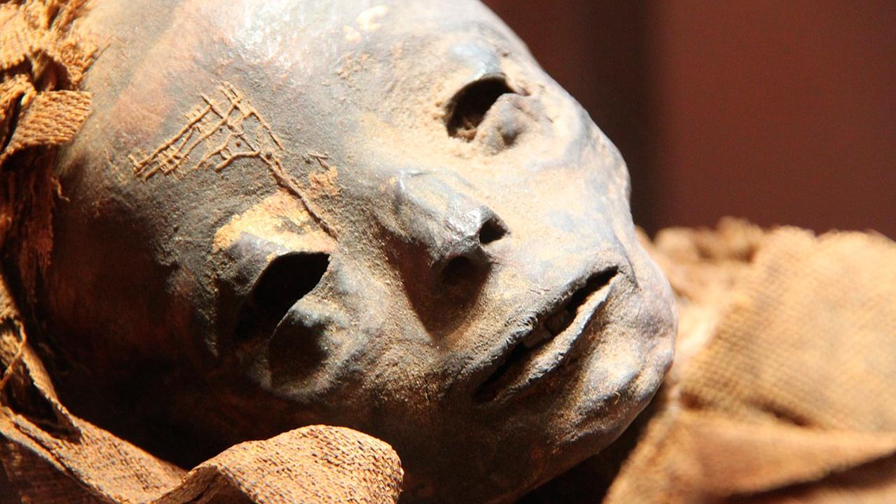 В квартире в центре Москвы обнаружили мумию