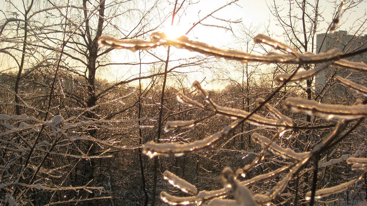 Подмосковье накроет ледяным дождем