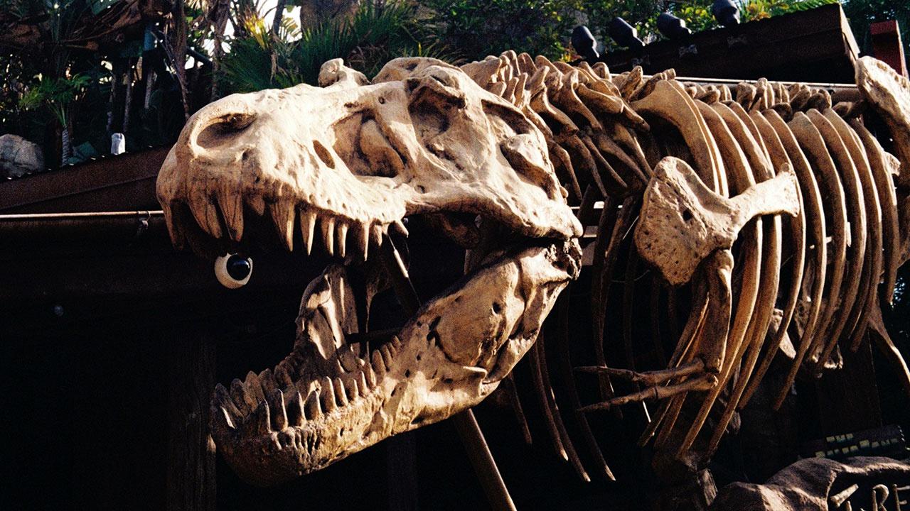 Объявлена окончательная причина гибели динозавров