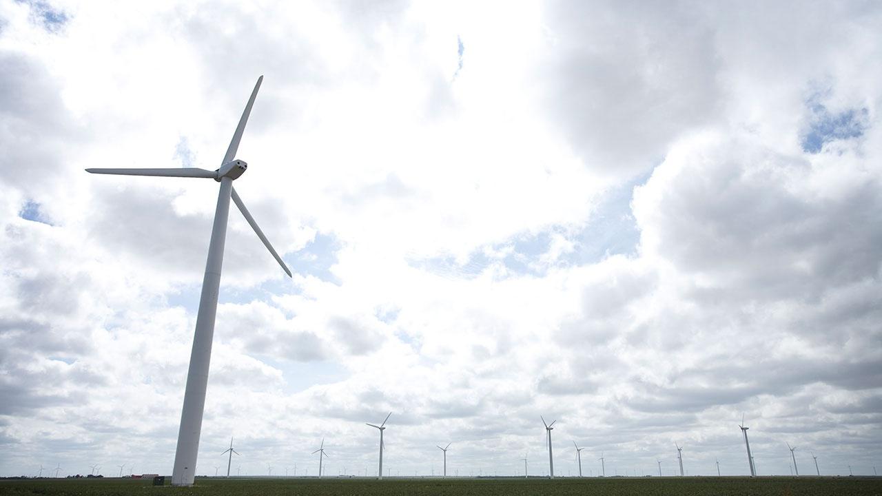 Путин назвал способы отогрева ветряных мельниц в Техасе далекими от защиты экологии