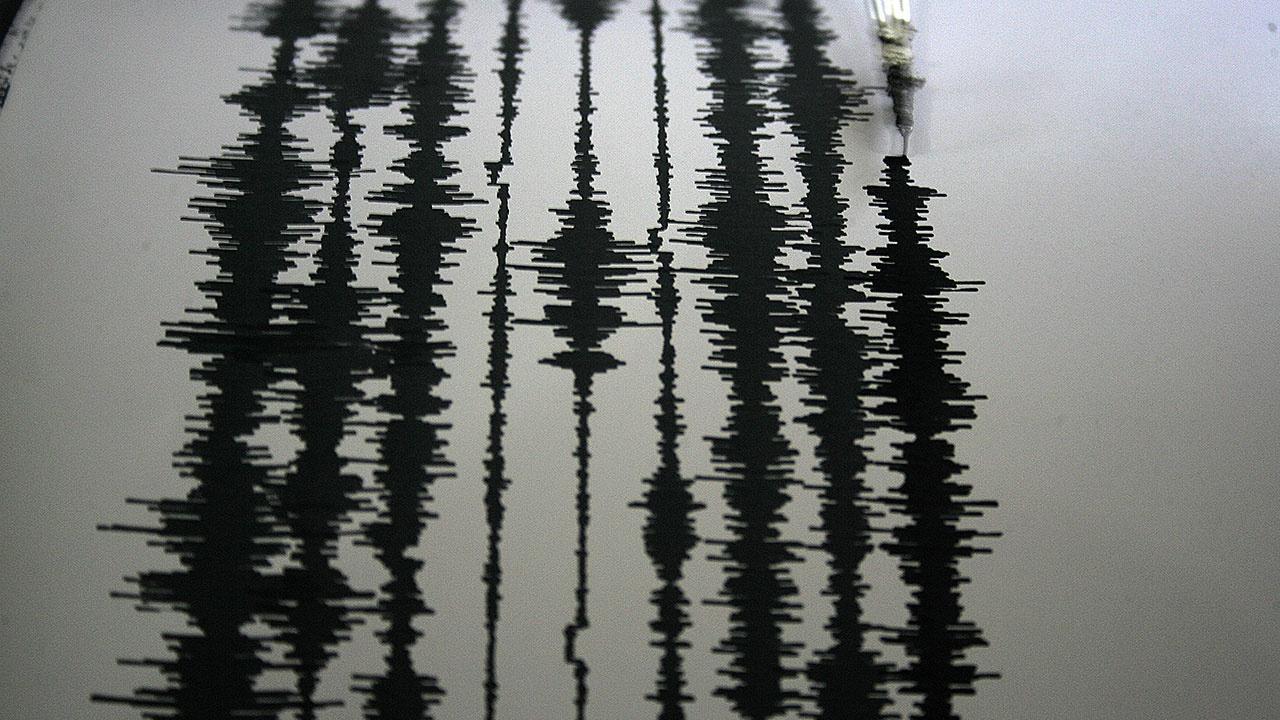 Снова трясет: у берегов Новой Зеландии произошло новое землетрясение