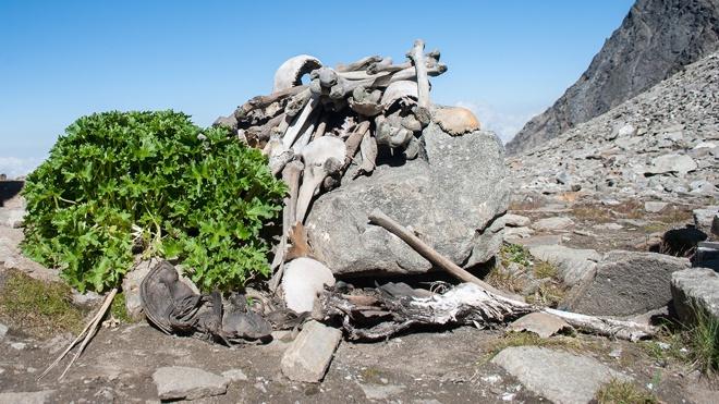В индийских Гималаях обнаружили таинственное озеро скелетов