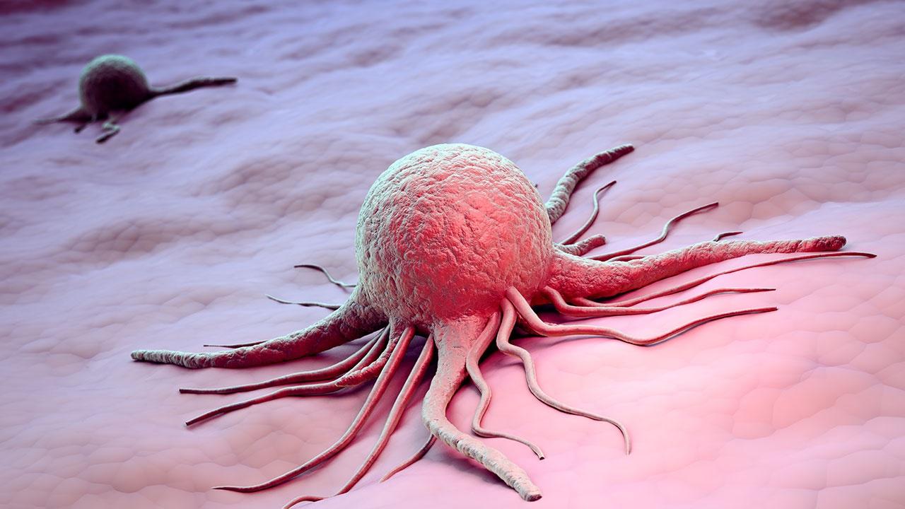 Названы вирусы, способные вызвать рак