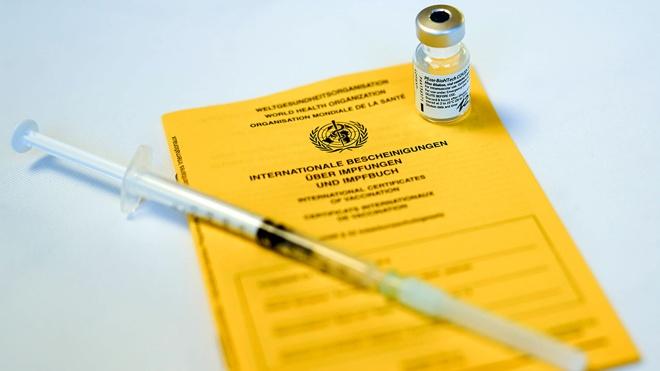 Лавров оценил идею введения паспортов вакцинации для международных поездок