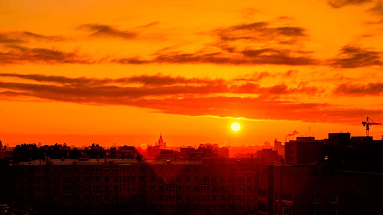 Жителям центра России пообещали «персиковое» лето