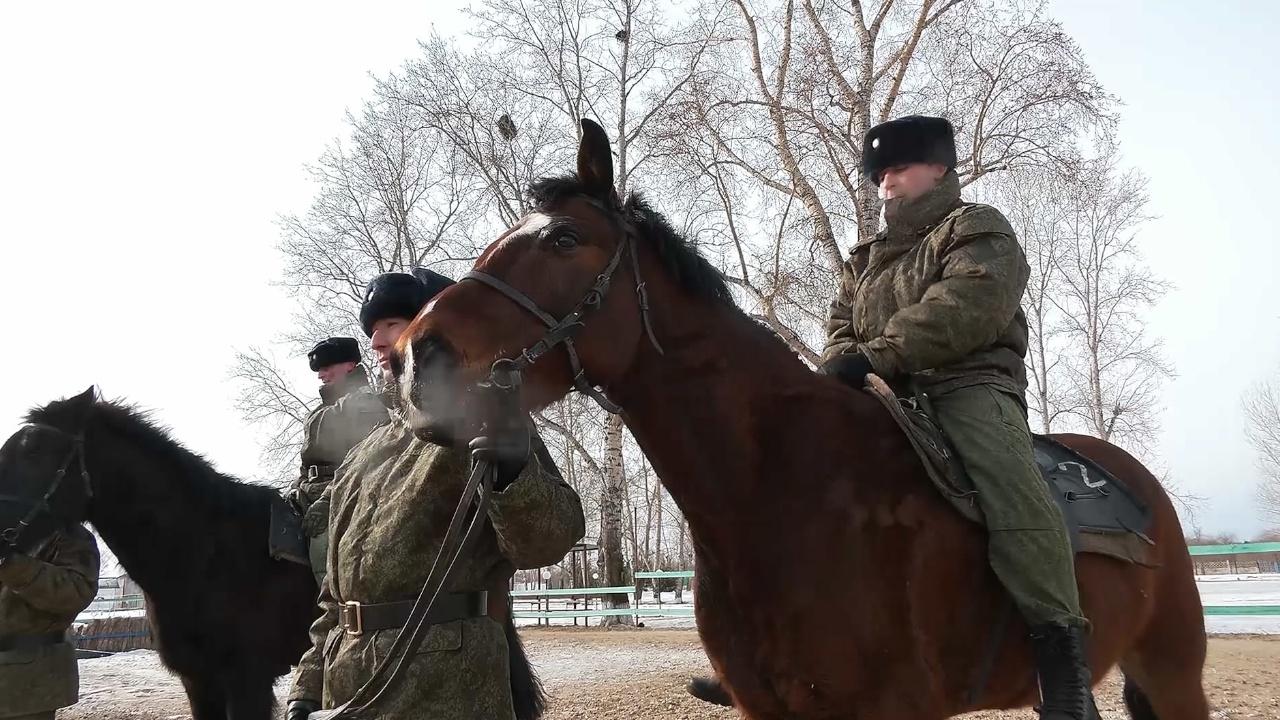 Верхом на коне: в Приамурье стартовала подготовка к конкурсу военных наездников