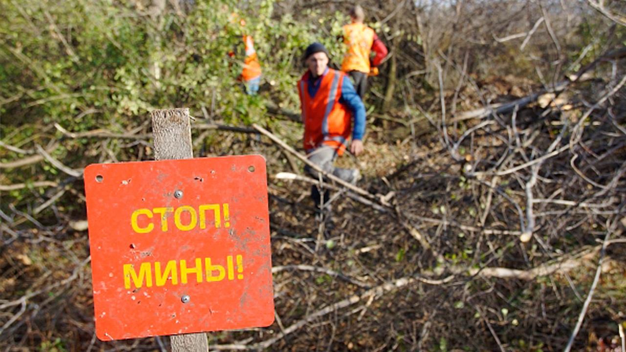 Власти ЛНР передали в Генпрокуратуру материалы о минировании ВСУ территории республики