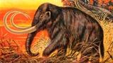 Не просто «мохнатый слон»: палеонтолог представил, каким может быть клонированный мамонт