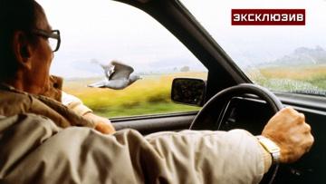 Автоэксперт рассказал, как не уснуть за рулем
