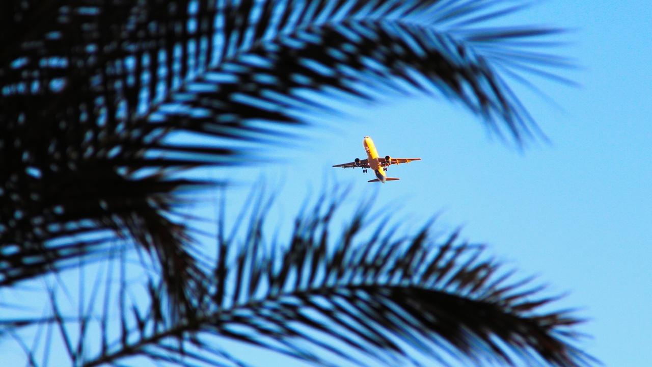 В оперштабе назвали сроки объявления решения о числе рейсов на египетские курорты