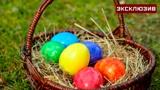 Монастырский повар рассказал, почему на Пасху принято красить яйца