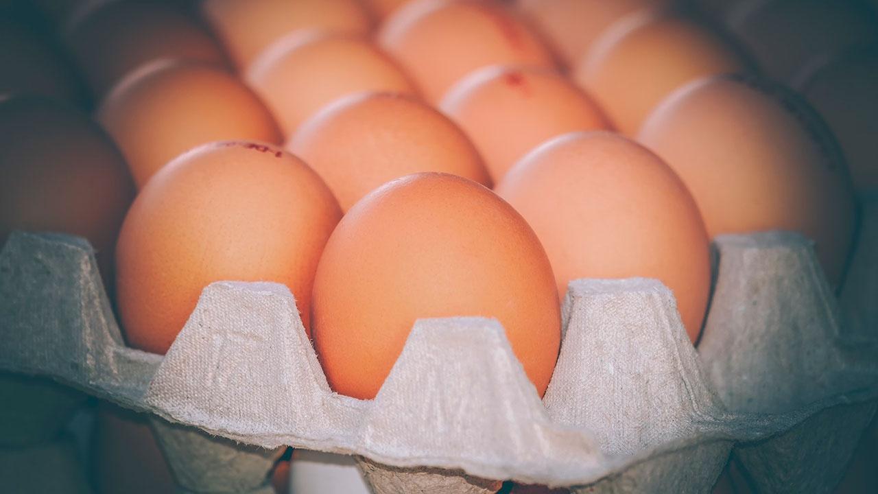 СМИ: в России зафиксировано снижение цен на яйца