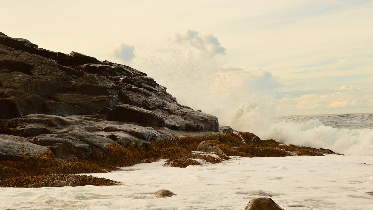 В Баренцевом море обнаружили тела еще двух рыбаков