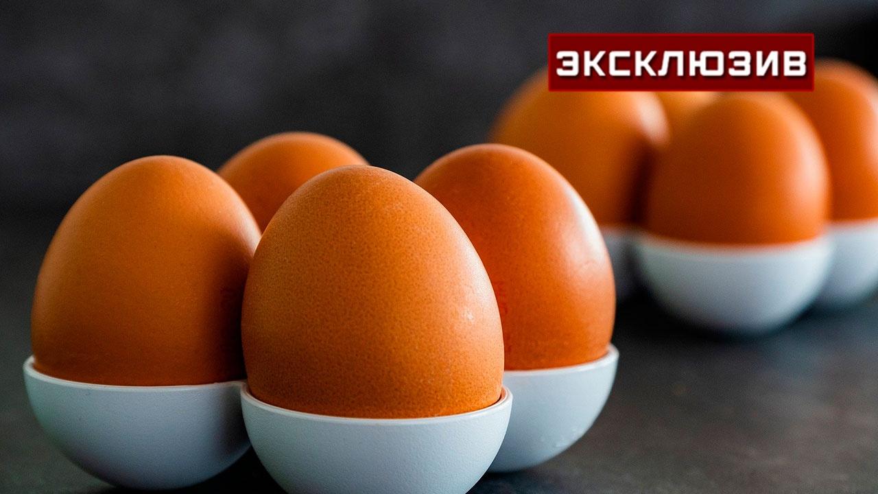 Диетолог развеял популярный миф о яйцах