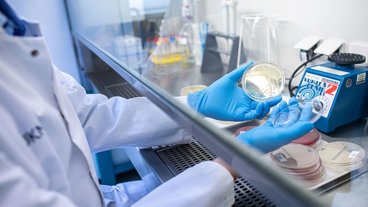 Ученые обнаружили гены уязвимости для COVID-19