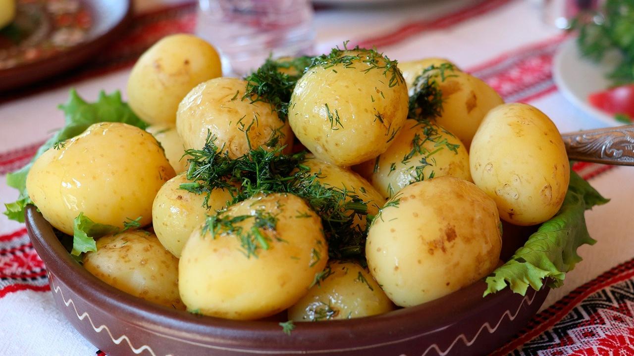 Диетолог объяснил, почему картофель нельзя исключать из рациона