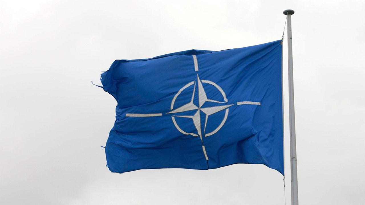 «Безумная идея»: французы высказались о вступлении Украины в НАТО