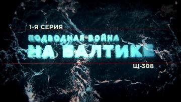 Подводная война на Балтике. Щ-308