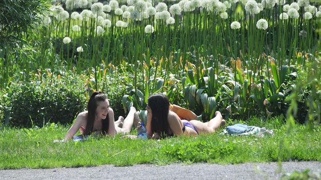 Метеоролог объяснил, почему лето в Москве будет «суховатым»