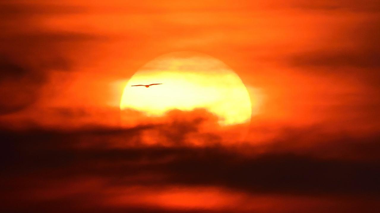 Ученые РАН оценили опасность приближающегося к Земле плазменного облака