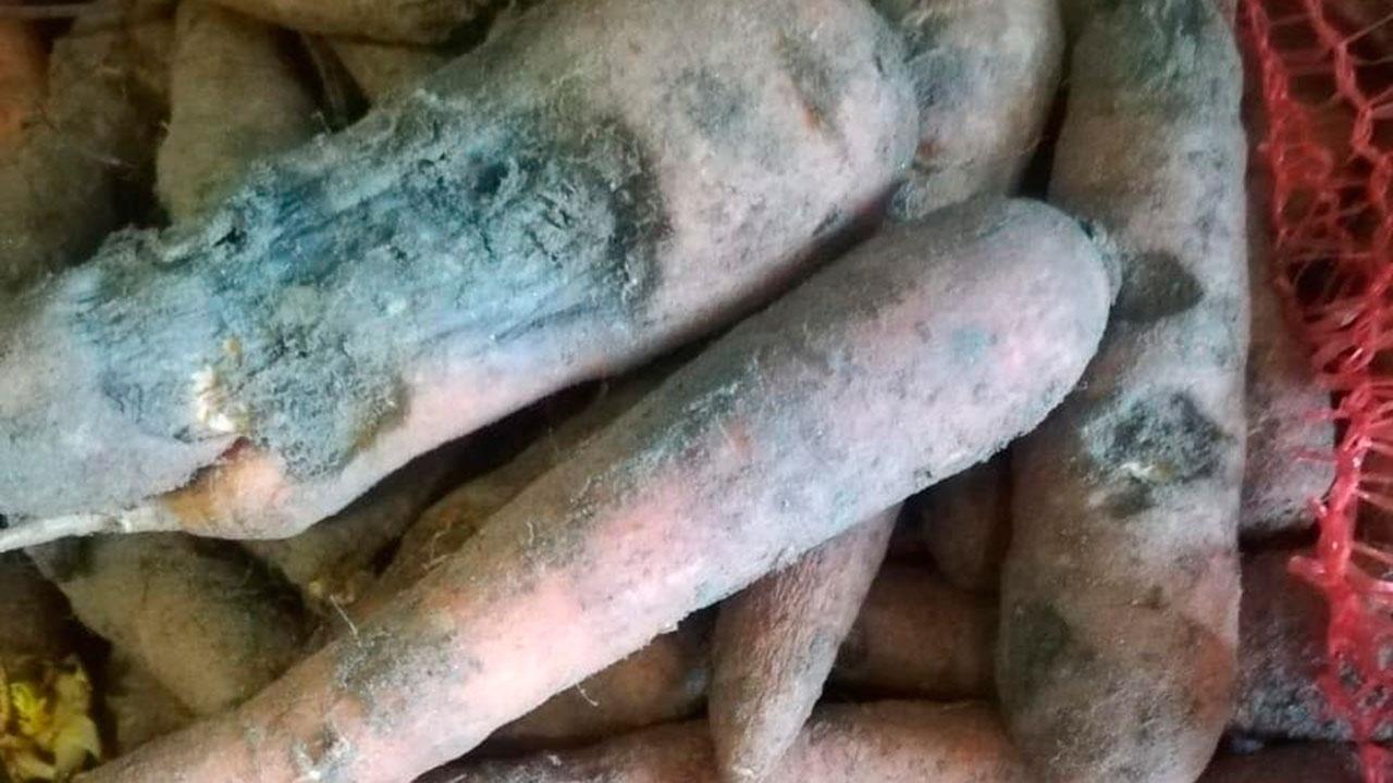 В детский сад Петрозаводска привезли гнилые продукты