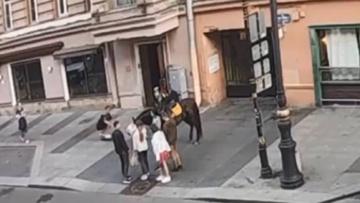 «ДТП» с участием скейтера и лошади в Санкт-Петербурге попало на видео