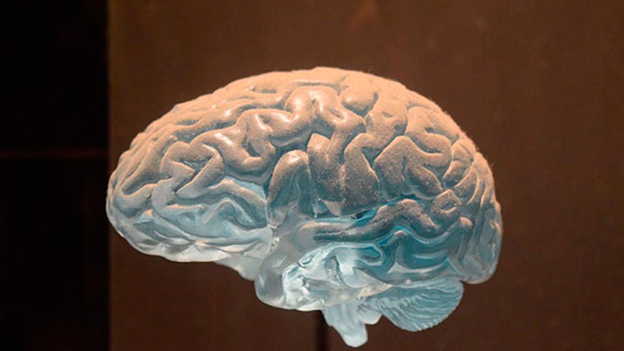 Ученые нашли способ выявить рак мозга на ранней стадии