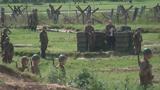 В парке «Патриот» пройдет военно-историческая реконструкция начала войны