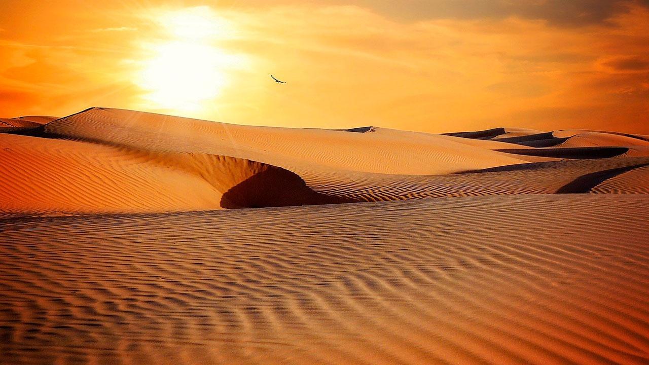 Экологи предрекли Украине превращение в пустыню