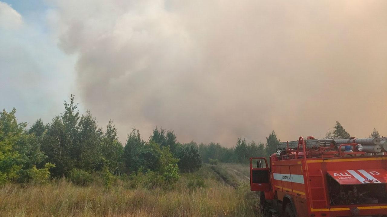 В Тольятти рядом с жилыми домами и санаторием возник природный пожар