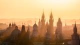 «Завтра скажу правду»: премьер Чехии Бабиш анонсировал важное заявление