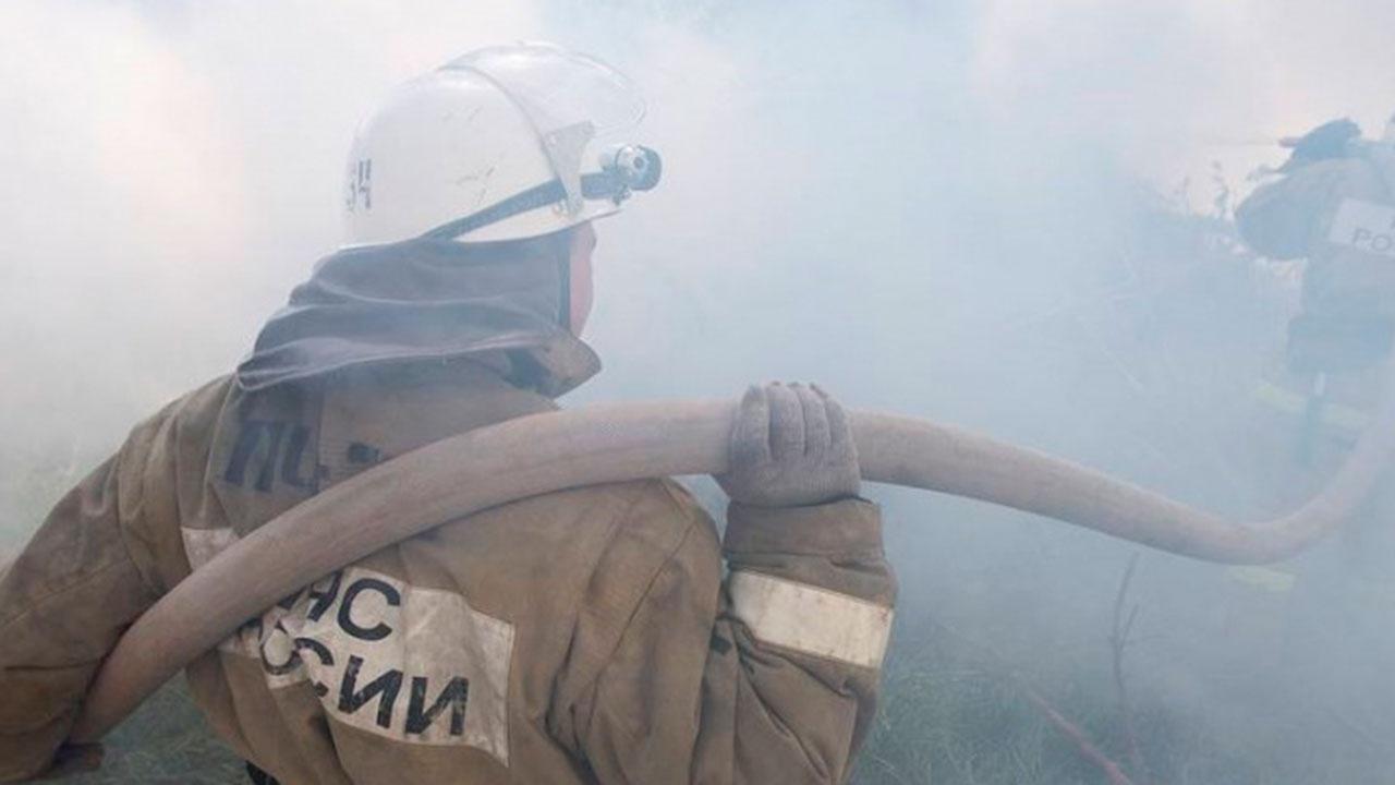 Площадь лесных пожаров в Карелии достигла пяти тысяч гектаров