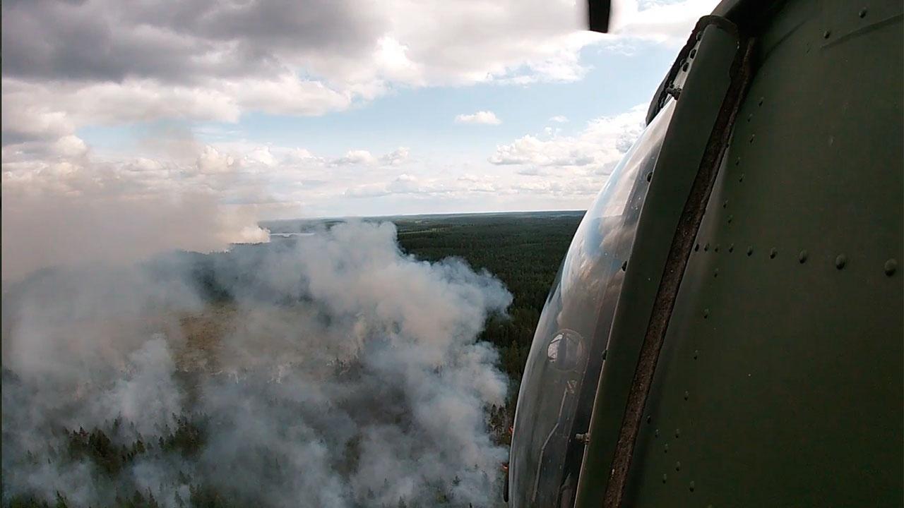 Путин попросил Шойгу оценить, в каких регионах нужно увеличить группировку по борьбе с лесными пожарами