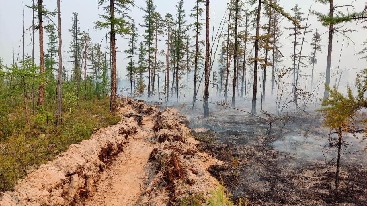 СМИ: дым от лесных пожаров в Якутии достиг Аляски