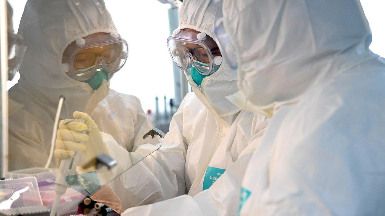 В Уханьском институте вирусологии опровергли утечку COVID-19 из лаборатории