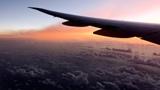 Россия увеличит число рейсов в Египет и Сирию с 9 августа