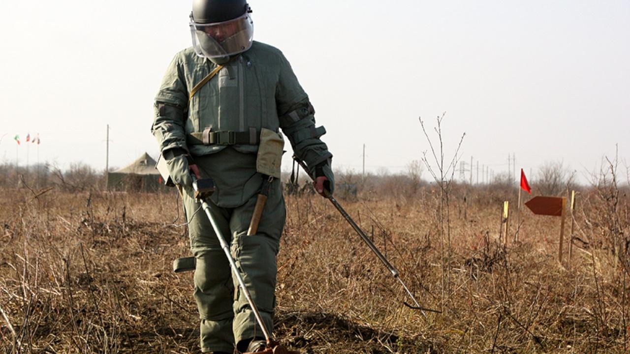 Робот «Кобра» и «Змей Горыныч»: саперы очистили полигон с «сюрпризами» под Калининградом