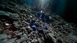 Фатальная случайность: в ООН рассказали о грандиозном числе опасных для Земли астероидов