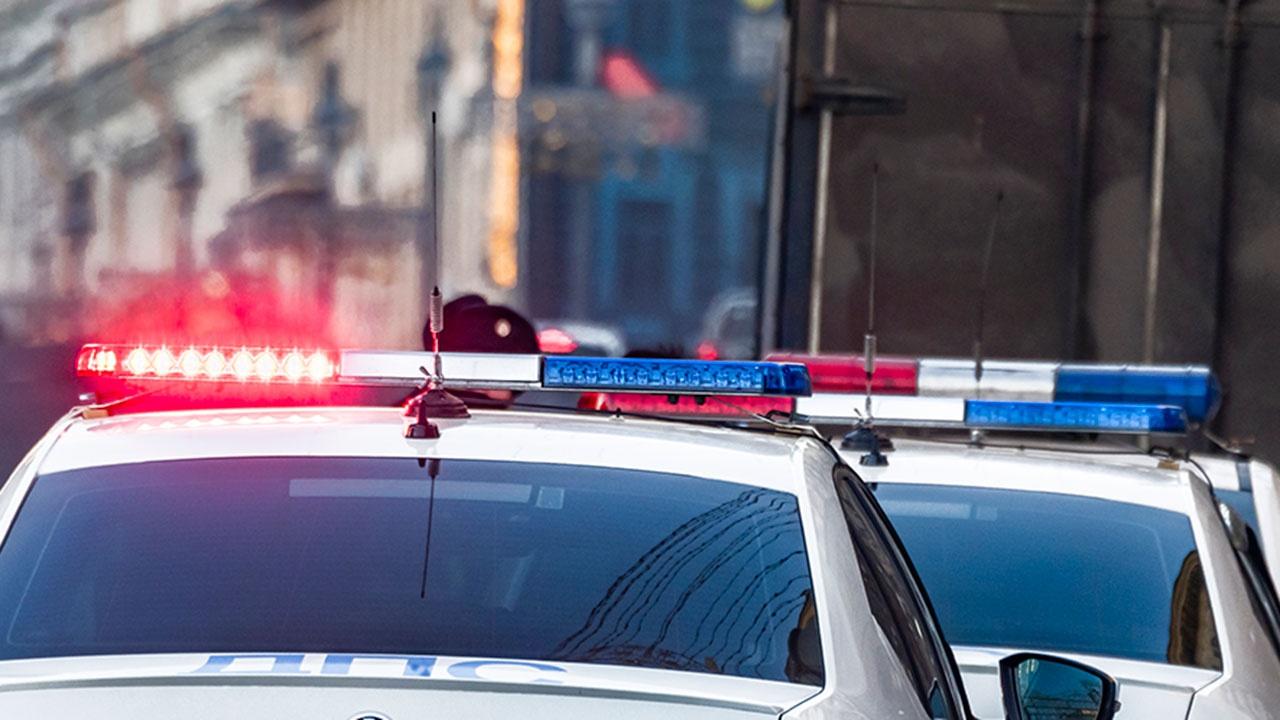 Машины ГИБДД оснастят «умными балками» для поиска угонщиков и нарушителей