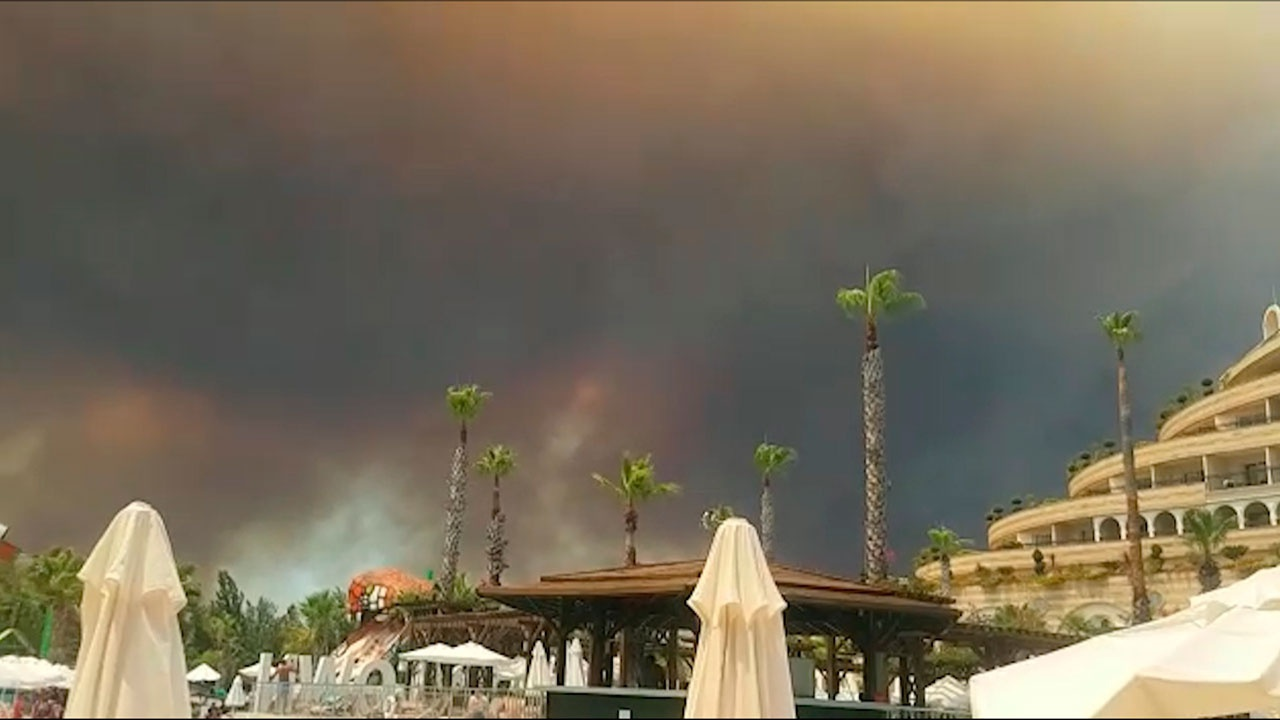 Эрдоган озвучил возможную причину масштабных лесных пожаров в Турции