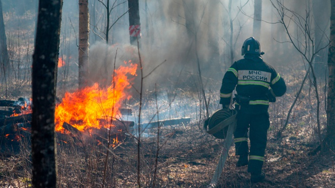 В России за сутки потушили 28 природных пожаров