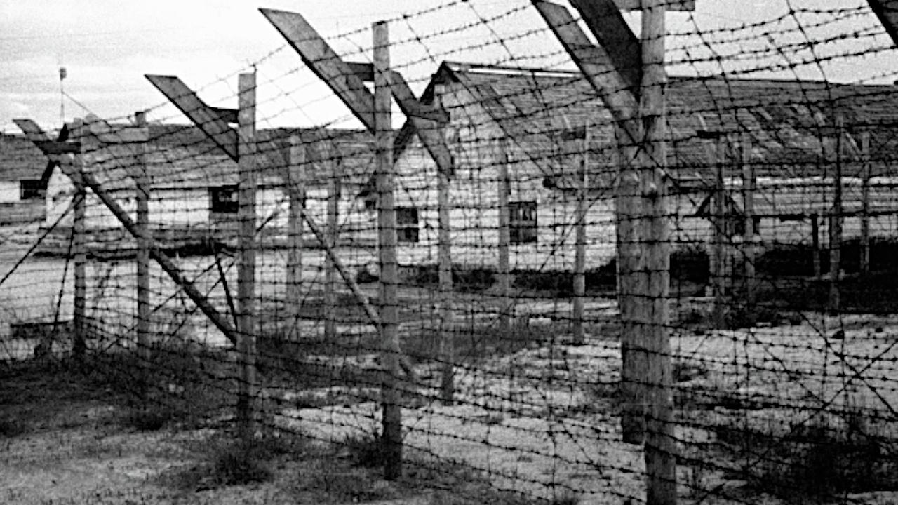 В Карелии обнаружили останки узников финских концлагерей времен ВОВ