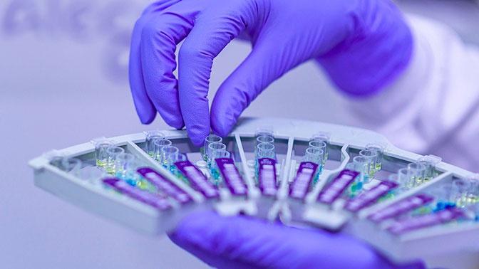 Найдено антитело, нейтрализующее все штаммы коронавируса