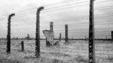 Опыты на живых людях и страшные пытки: как Квантунская армия Японии расправлялась с военнопленными